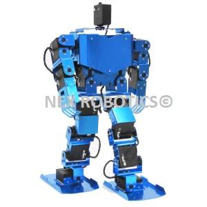 17 DOF  Humanoid Robot
